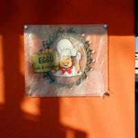 Placa Transparente com Polongador